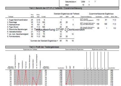 Testauswertung DTVP-2 Auswertungsbogen